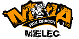 Iron Dragon - MMA Mielec